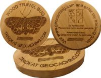 Wood Travel Bug